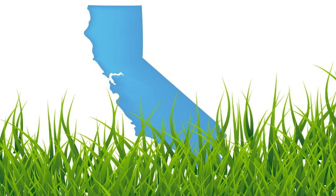 Keeping California Democrats Strong